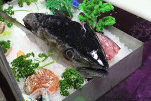 Hlava tuňáka.
